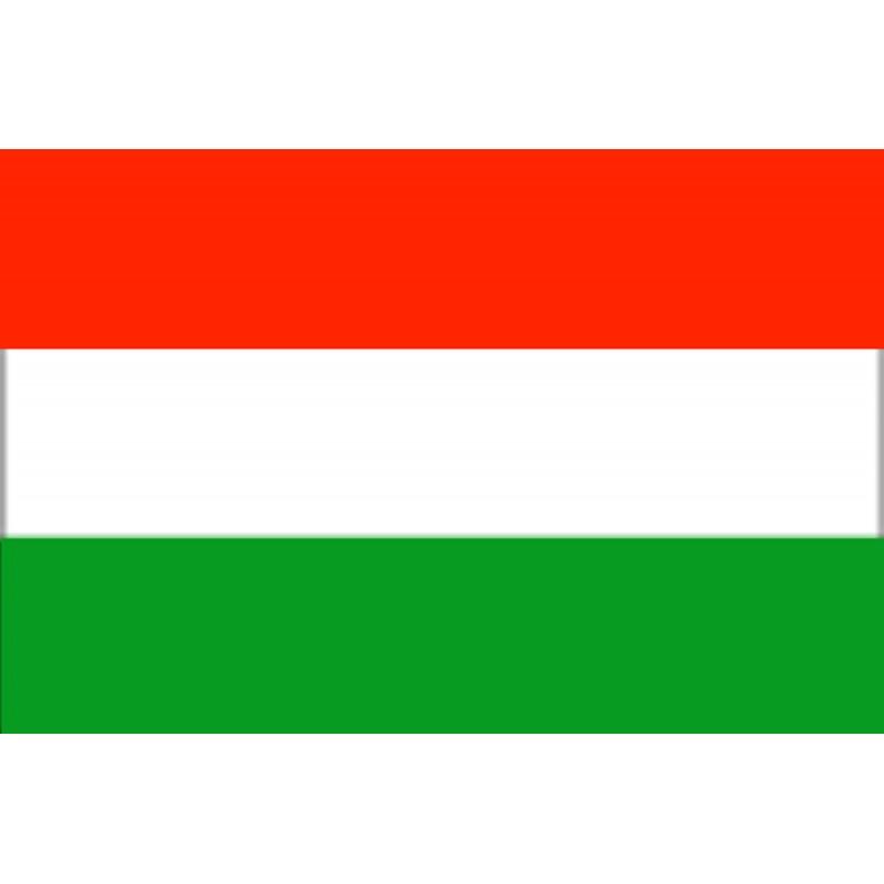 Bandera Hungría 20 x 30 Cm
