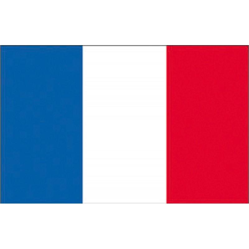 Flag France cm. 40 X 60