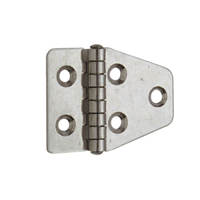 55x40 mm polished stainless steel hinges