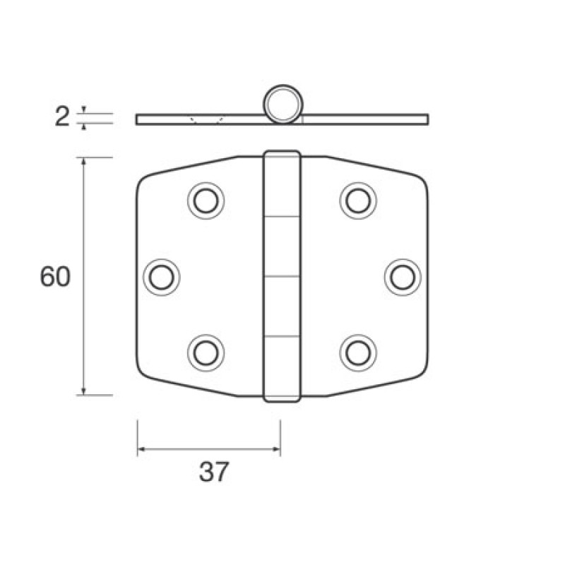 Mirror-Polished Stainless Steel Hinges 60x74mm