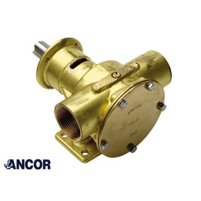 Ancor Original Pump Pm40